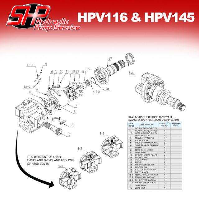hpv116_hpv145
